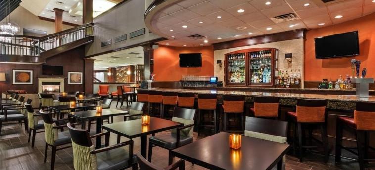 Hotel Crowne Plaza Dallas Near Galleria-Addison: Bar ADDISON (TX)