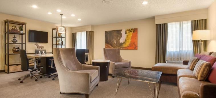Hotel Crowne Plaza Dallas Near Galleria-Addison: Dettaglio ADDISON (TX)