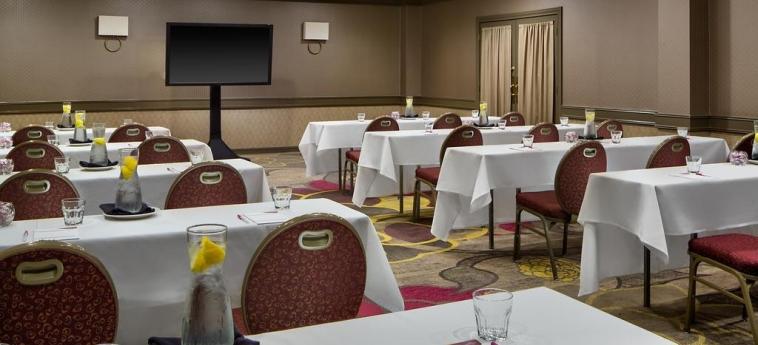 Hotel Crowne Plaza Dallas Near Galleria-Addison: Sala Conferenze ADDISON (TX)