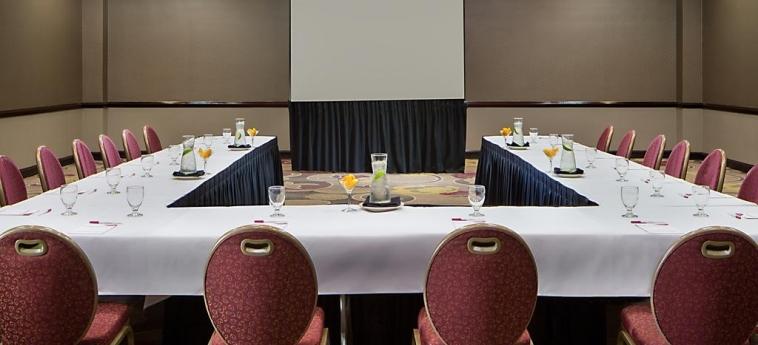 Hotel Crowne Plaza Dallas Near Galleria-Addison: Sala Riunioni ADDISON (TX)