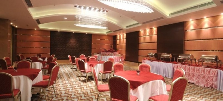 The Fern - An Ecotel Hotel: Conference Room AHMEDABAD