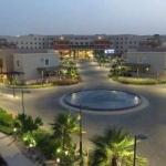 Hotel Al Reem Village