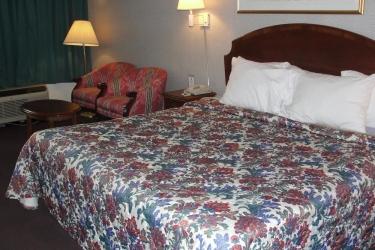 Hotel Royal Inn Knoxville Airport Alcoa: Guestroom ALCOA (TN)