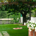 SANT'ANNA BED & BREAKFAST 0 Sterne