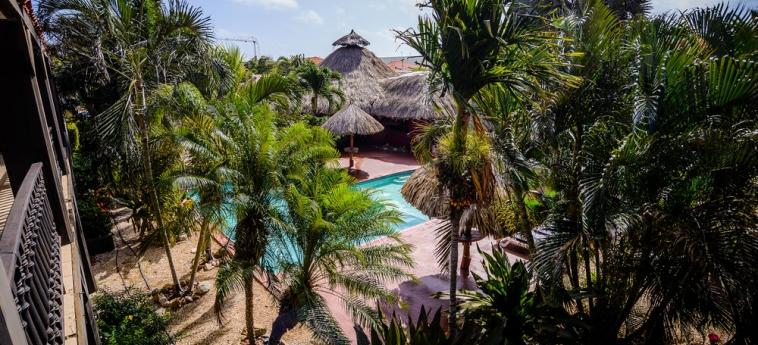 Hotel Perle D'or: Piscina Exterior ARUBA