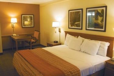La Quinta Atlanta Marietta Hotel: Habitación ATLANTA (GA)