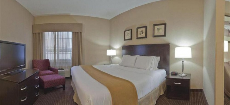 Hotel Holiday Inn Express Ashtabula Geneva: Habitaciòn AUSTINBURG (OH)