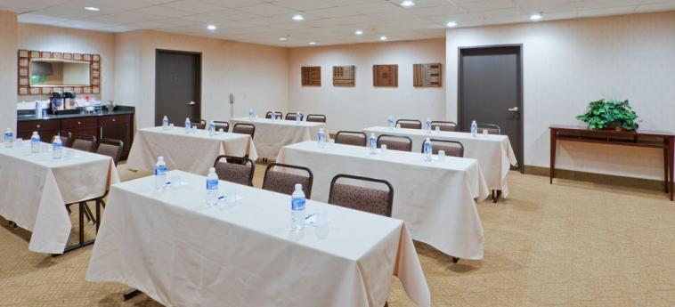 Hotel Holiday Inn Express Ashtabula Geneva: Instalaciones para reuniones AUSTINBURG (OH)