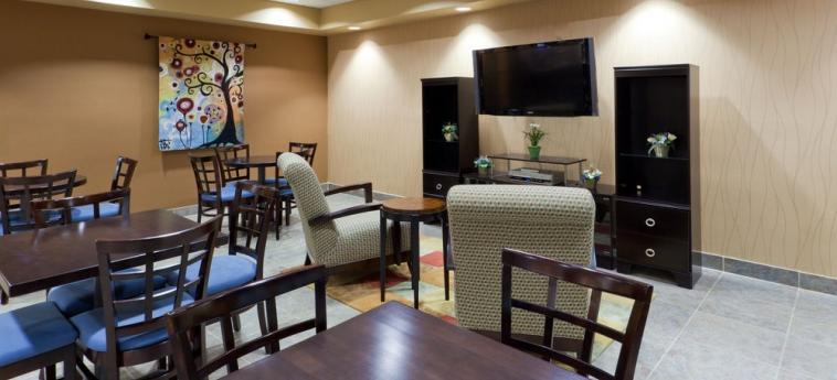 Hotel Holiday Inn Express Ashtabula Geneva: Restaurante AUSTINBURG (OH)