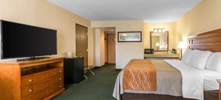 Hotel Comfort Inn Vail/beaver Creek: Chanbre AVON (CO)