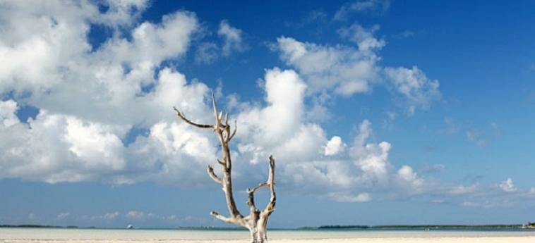 Hotel Pink Sands Resort: Beach BAHAMAS