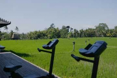 Hotel Tanah Gajah, A Resort By Hadiprana: Palestra BALI