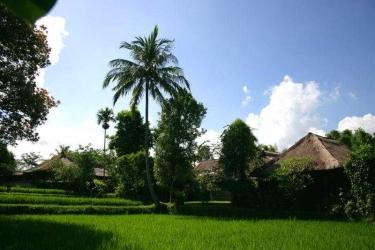 Hotel Ananda Cottages: Exterior BALI