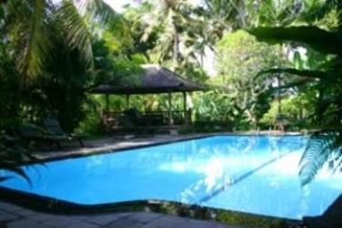 Hotel Ananda Cottages: Swimming Pool BALI
