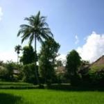 Hotel Ananda Cottages
