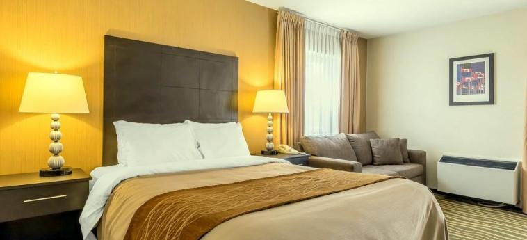 Hotel Comfort Inn Barrie: Room - Double BARRIE - ONTARIO