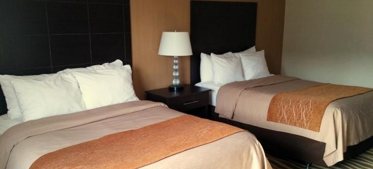 Hotel Comfort Inn Barrie: Twin Room BARRIE - ONTARIO