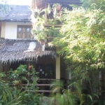Hotel Bamboo Bungalows