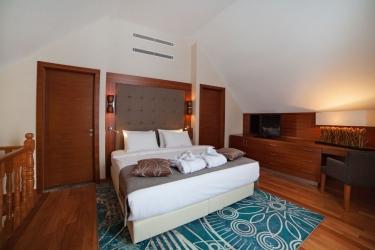 Hotel Crowne Plaza Borjomi: Camera degli ospiti BORJOMI