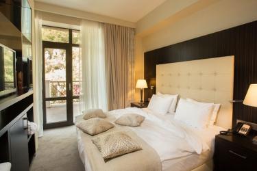 Hotel Crowne Plaza Borjomi: Stanza degli ospiti BORJOMI