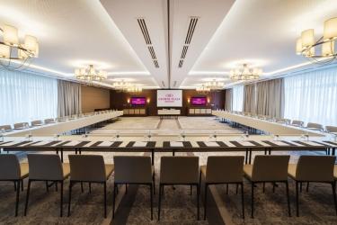 Hotel Crowne Plaza Borjomi: Struttura per riunioni BORJOMI