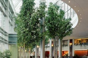 Hotel Hilton Boston Logan Airport: Lobby BOSTON (MA)