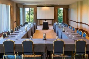 Hotel Hilton Boston Logan Airport: Sala Conferenze BOSTON (MA)