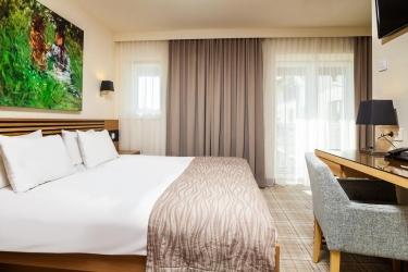 Ana Hotels Sport Poiana Brasov: Chambre Double BRASOV