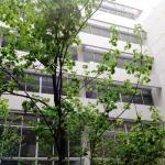 Hotel Riva Urban Loft