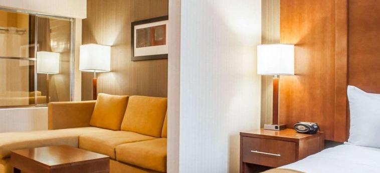 Hotel Comfort Suites Buffalo Airport: Detalle del hotel BUFFALO (NY)