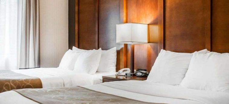Hotel Comfort Suites Buffalo Airport: Habitacion Suite BUFFALO (NY)
