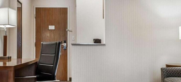 Hotel Comfort Suites Buffalo Airport: Dettaglio dell'hotel BUFFALO (NY)
