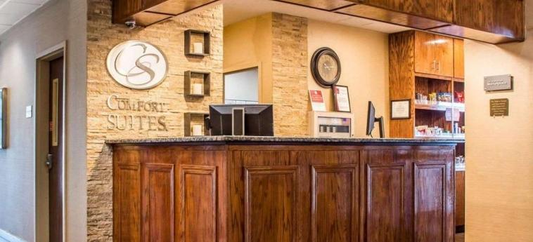Hotel Comfort Suites Buffalo Airport: Lobby BUFFALO (NY)