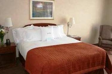 Hotel Wyndham Garden Buffalo Downtown: Chambre BUFFALO (NY)
