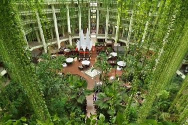 Hotel Paradisus Cancun: Lobby CANCUN