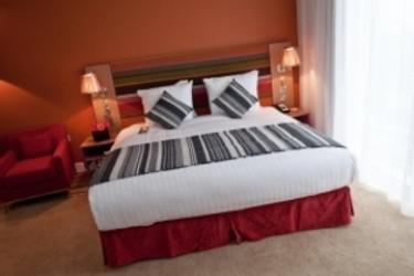 Hotel Radisson Blu Cardiff: Habitaciòn Doble CARDIFF