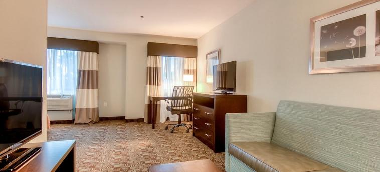 Hotel Holiday Inn Express Carlsbad Beach: Living area CARLSBAD (CA)
