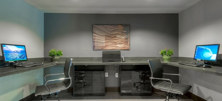 Hotel Holiday Inn Express Carlsbad Beach: Business Centre CARLSBAD (CA)