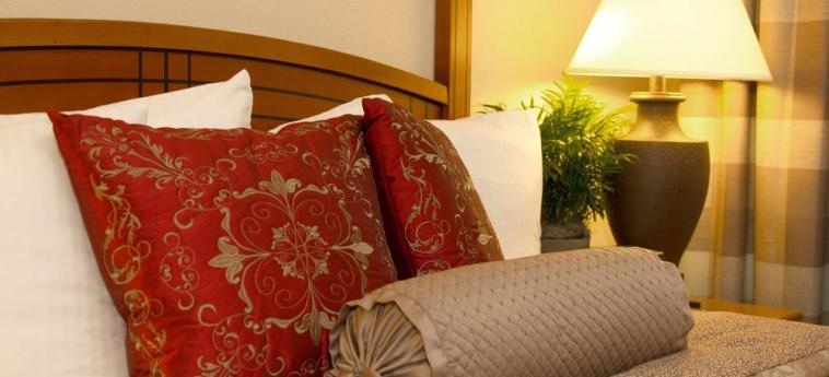 Hotel Staybridge Suites Chantilly Fairfax: Gastzimmer Blick CHANTILLY (VA)