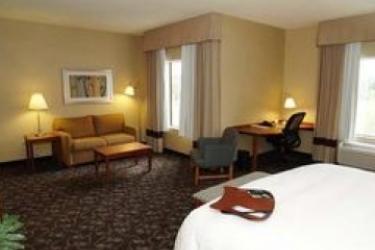 Hotel Hampton Inn & Suites Chicago Deer Park: Chambre Suite CHICAGO (IL)