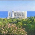 Hotel Alion Beach