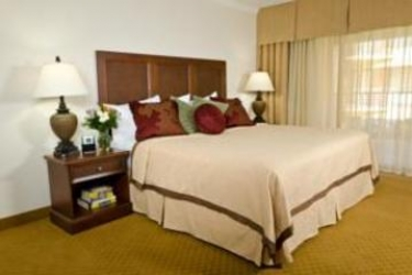 Hotel Coconut Cove All-Suite: Chambre CLEARWATER (FL)