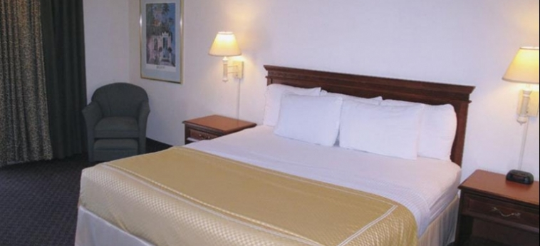 Hotel La Quinta Inn Clearwater Central: Chambre classique CLEARWATER (FL)