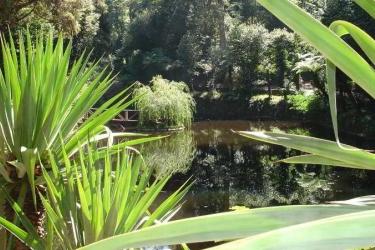 Hotel Alegre: Attività Offerte COIMBRA