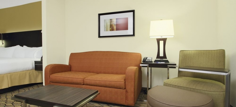 Hotel Holiday Inn Express & Suites First & Main: Sala de estar COLORADO SPRINGS (CO)