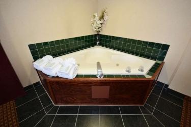 Hotel Best Western Concord Inn & Suites: Habitacion Suite CONCORD (NH)