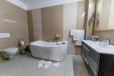 Hotel Rexton: Badezimmer CRAIOVA