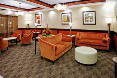 Hotel Holiday Inn Express Dallas Market Center: Lobby DALLAS (TX)