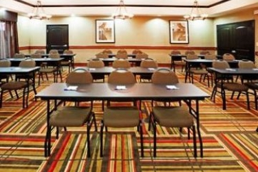 Hotel Holiday Inn Express Dallas Market Center: Sala de conferencias DALLAS (TX)