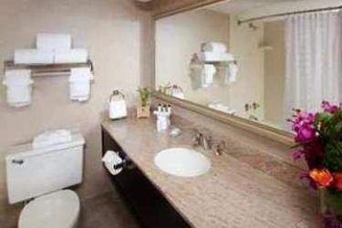 Hotel Embassy Suites By Hilton Dallas Love Field: Bathroom DALLAS (TX)